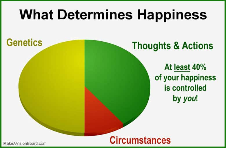 What Determines Happiness - http://makeavisionboard.com/science-of-happiness/